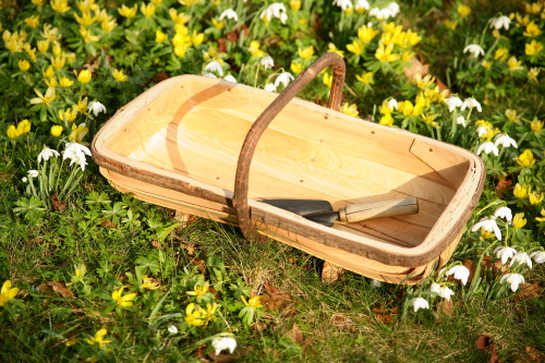 Sussex style trug - FT6